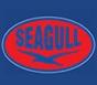 南非seagull公司